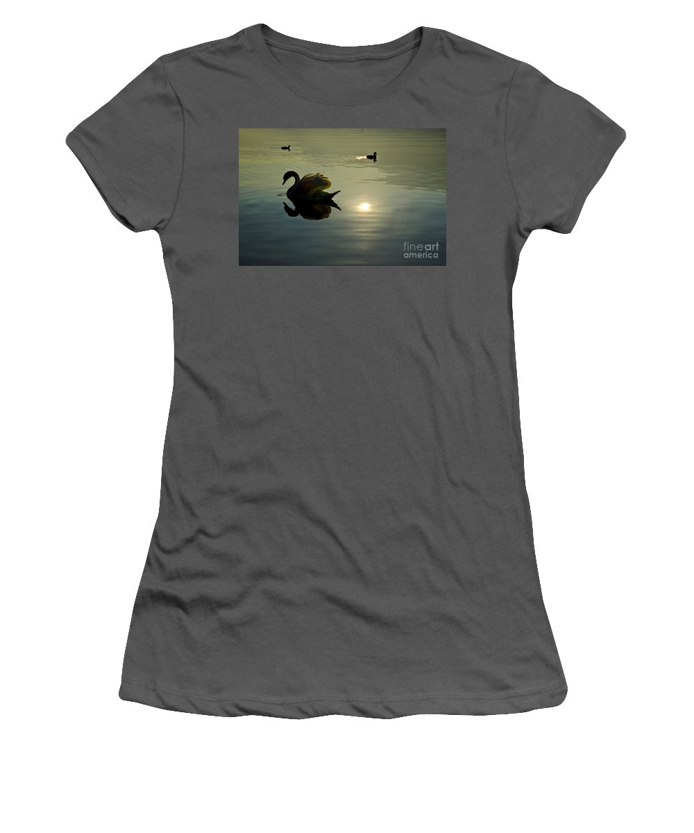 Swan Women's T-Shirt (Athletic Fit) featuring the photograph Swan And Ducks by Mats Silvan