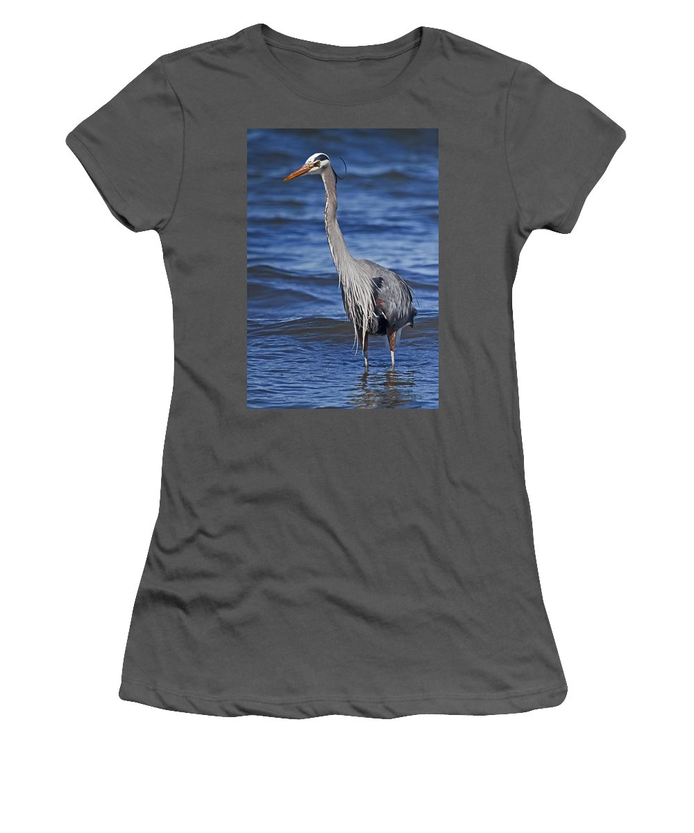 Great Blue Heron Women's T-Shirt (Athletic Fit) featuring the photograph Untitled by Karen Ulvestad