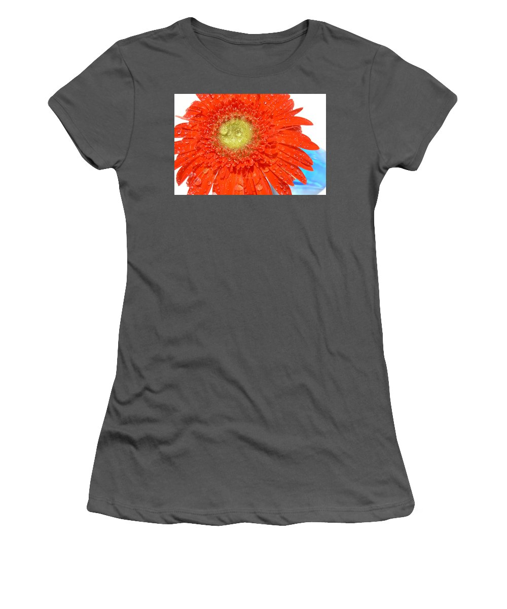 Gerbera Photographs Women's T-Shirt (Athletic Fit) featuring the photograph 2039a-001 by Kimberlie Gerner