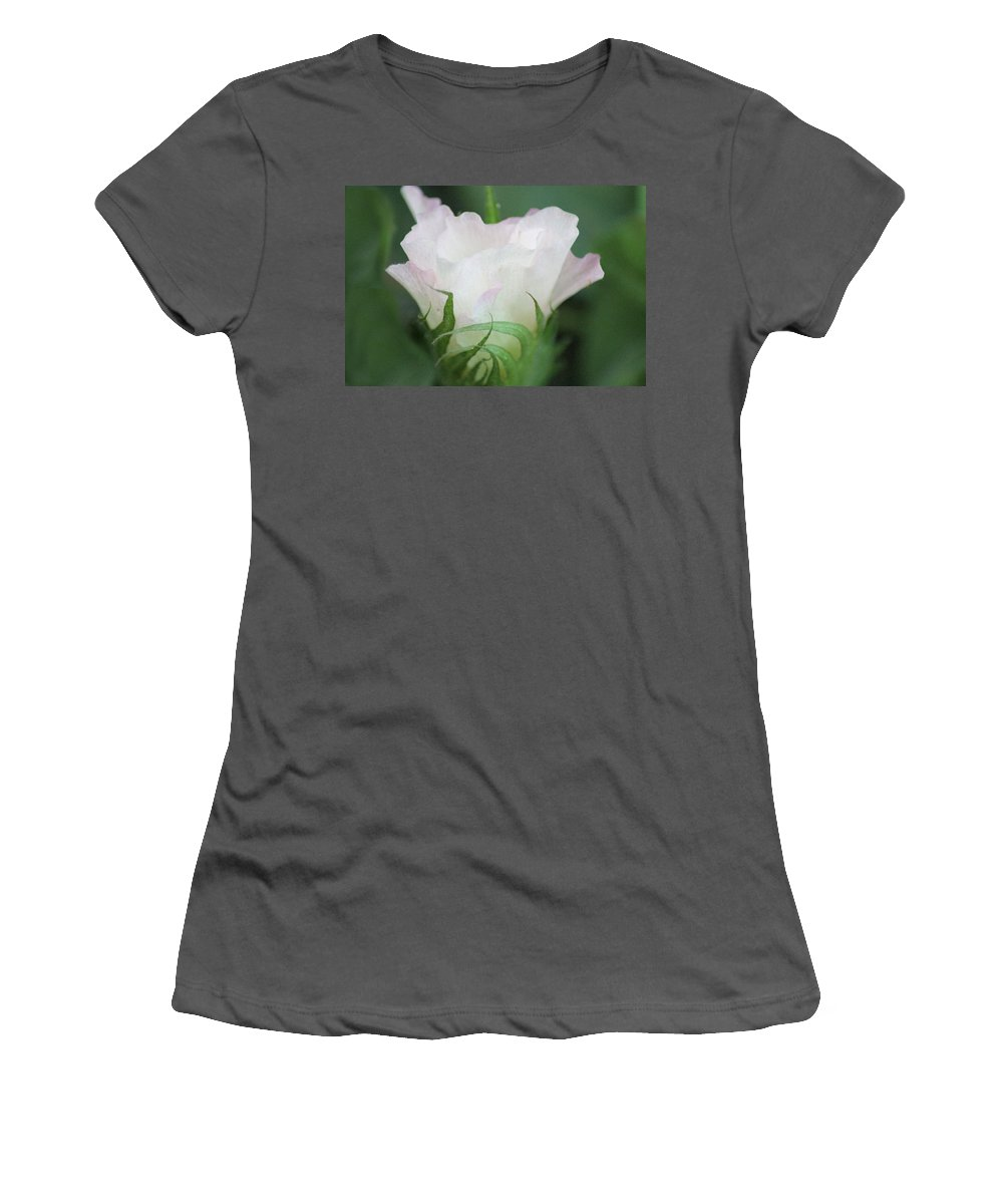 Agriculture Women's T-Shirt (Athletic Fit) featuring the photograph Agriculture - Cotton Bloom by Karen Wagner