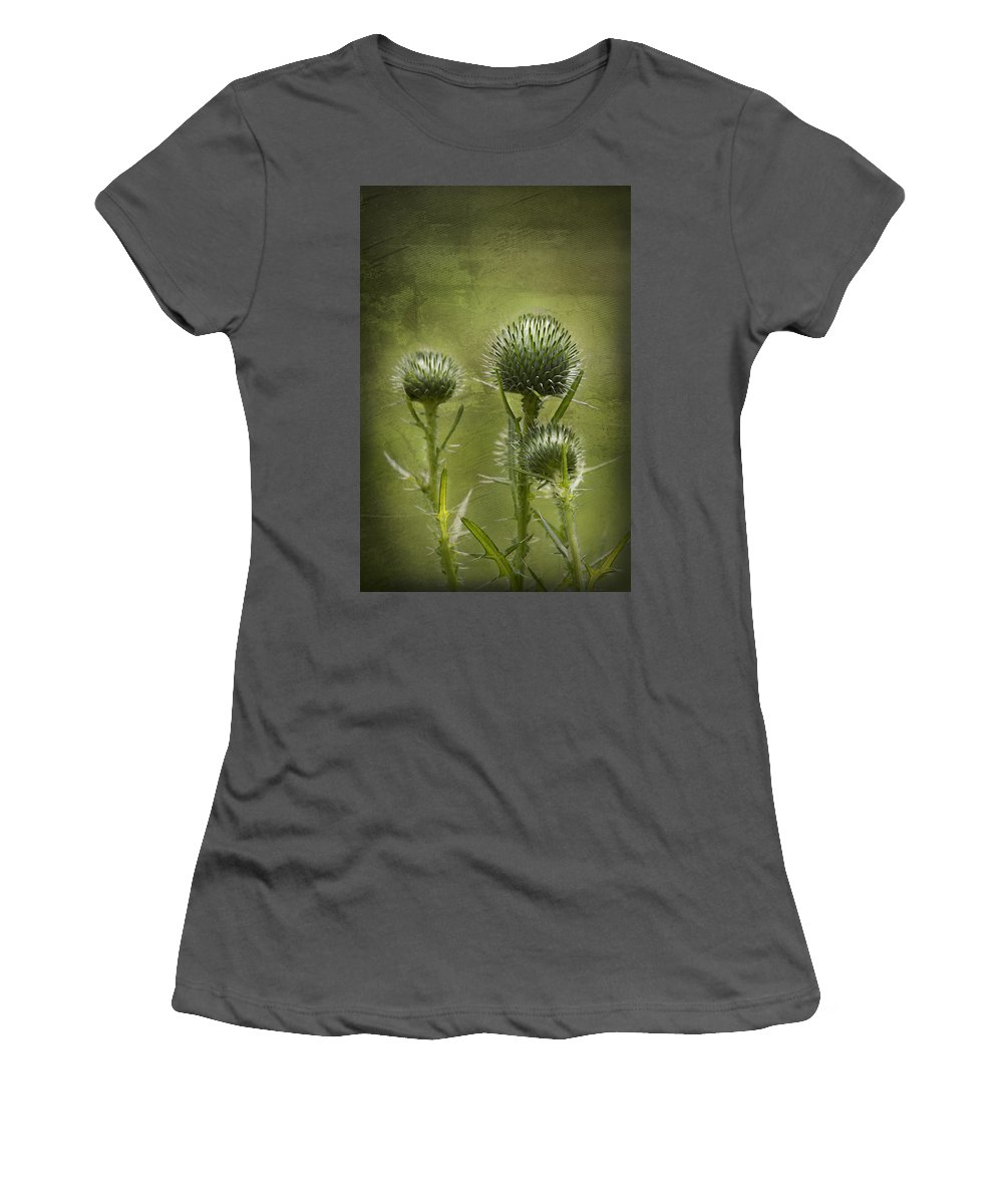 Bull Thistle Women's T-Shirt (Athletic Fit) featuring the photograph All Prickles And Stings by Kathy Clark