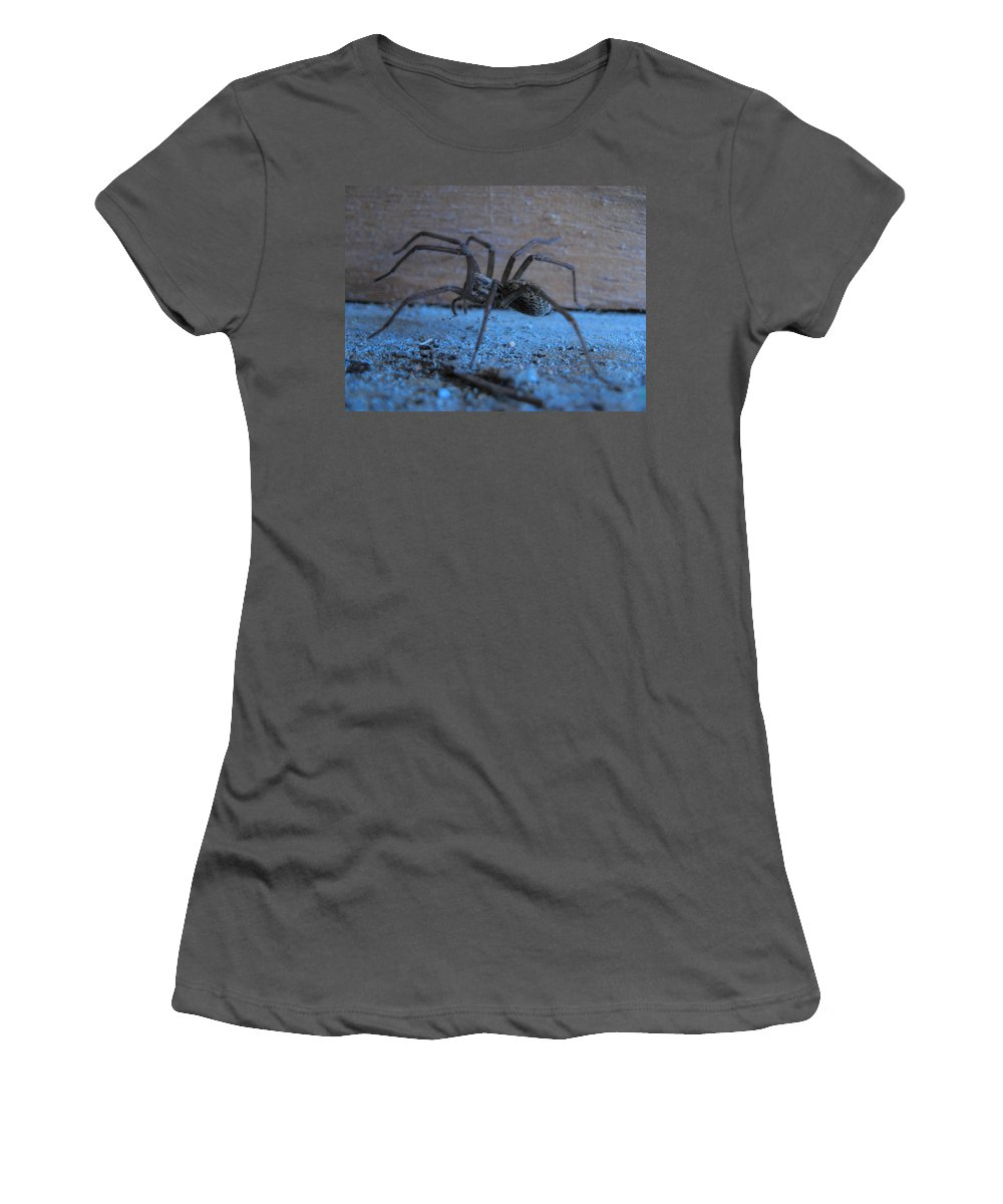 Big Brown Spider Women's T-Shirt (Athletic Fit) featuring the photograph Big Brown Spider by Kym Backland