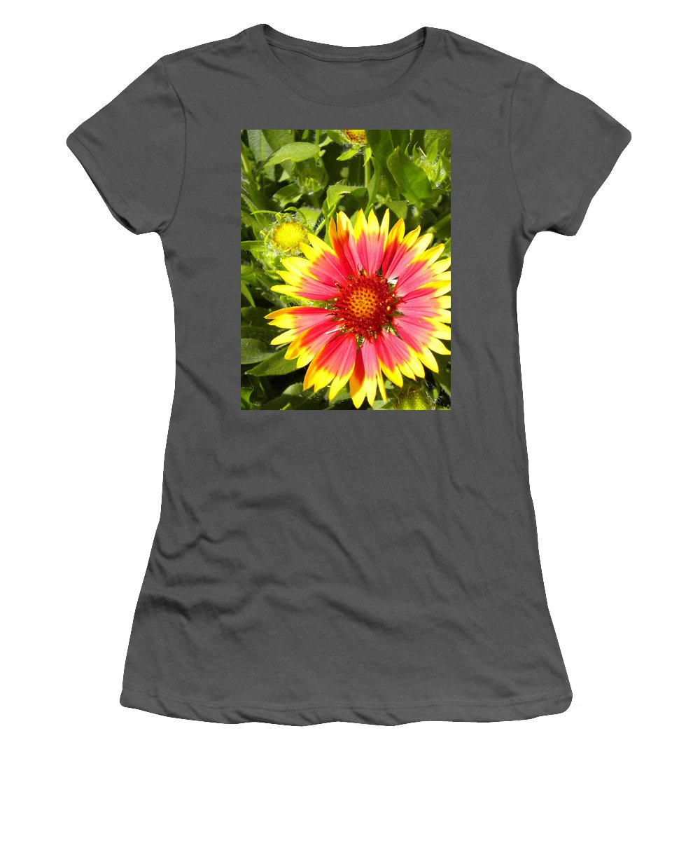 Gaillardia Women's T-Shirt (Athletic Fit) featuring the painting Blanket Flower by Renate Nadi Wesley