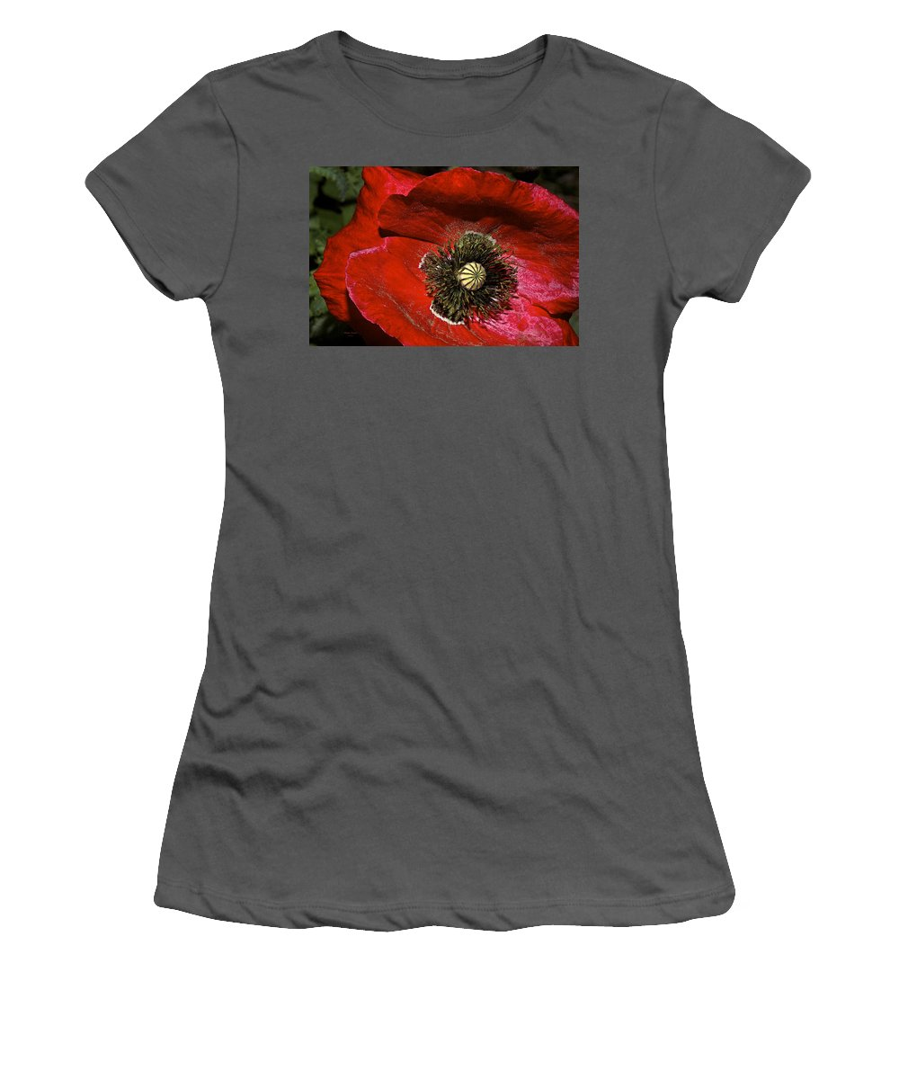 Poppy Women's T-Shirt (Athletic Fit) featuring the photograph Bright Red Poppy by Phyllis Denton