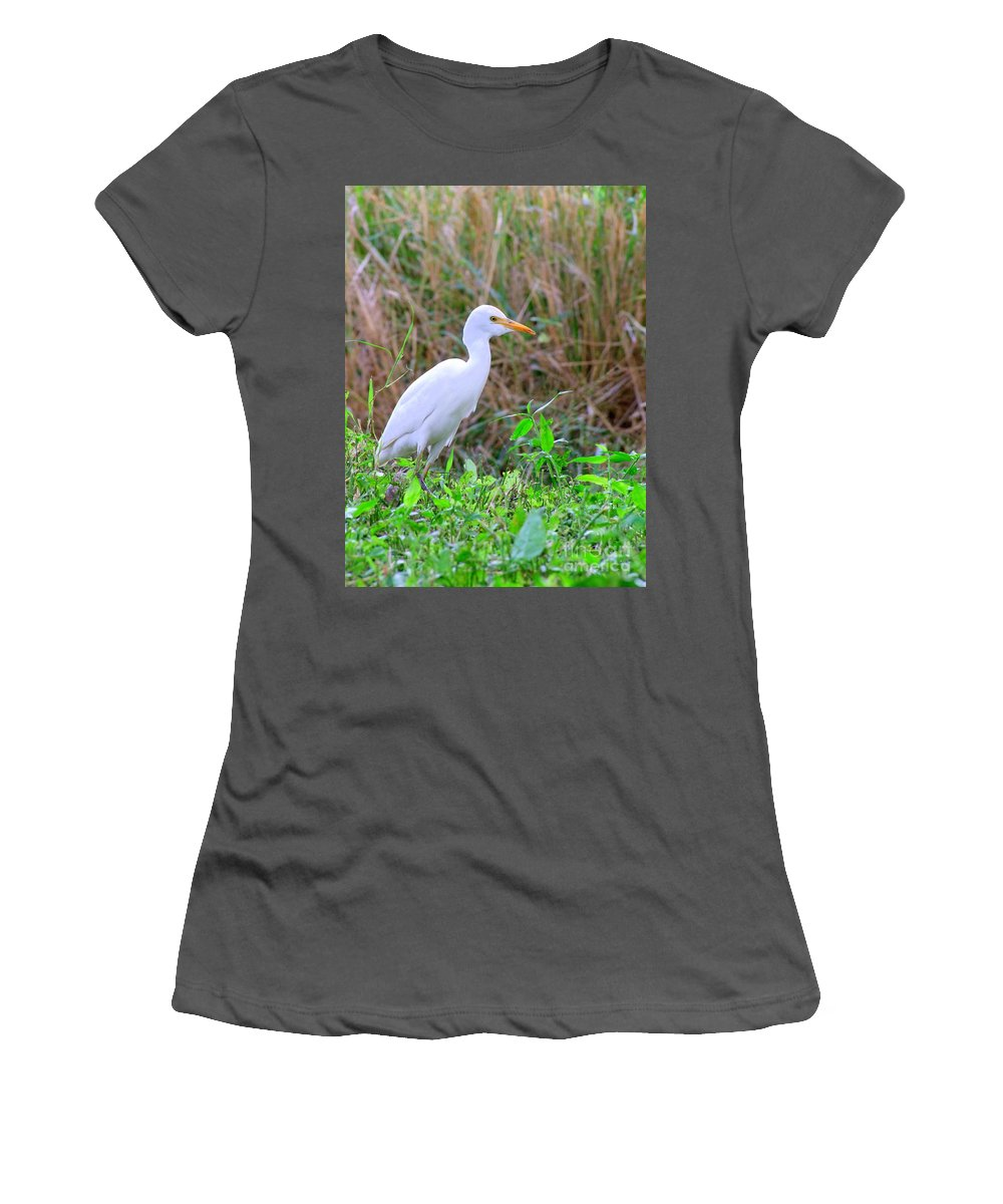 Birds Women's T-Shirt (Athletic Fit) featuring the photograph Cattle Egret by Mary Deal