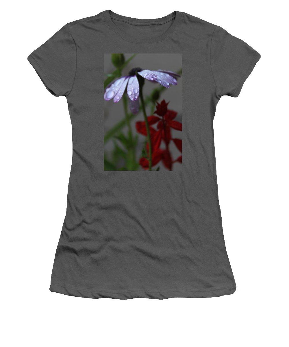 Daisy Women's T-Shirt (Athletic Fit) featuring the photograph Daisy Drops by Lauri Novak