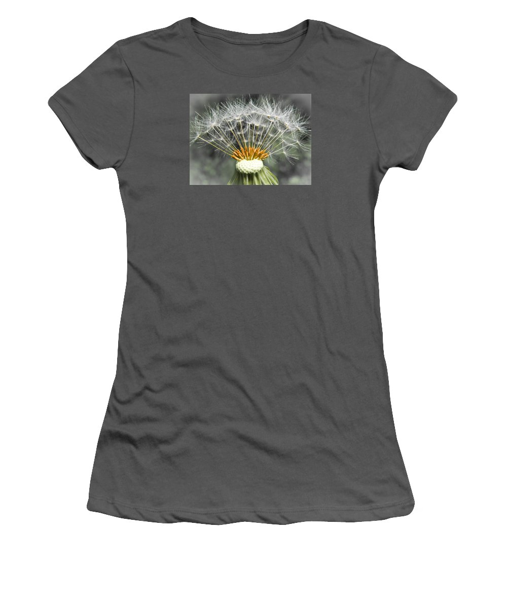 Nature Women's T-Shirt (Athletic Fit) featuring the photograph Dandelion by Jiayin Ma
