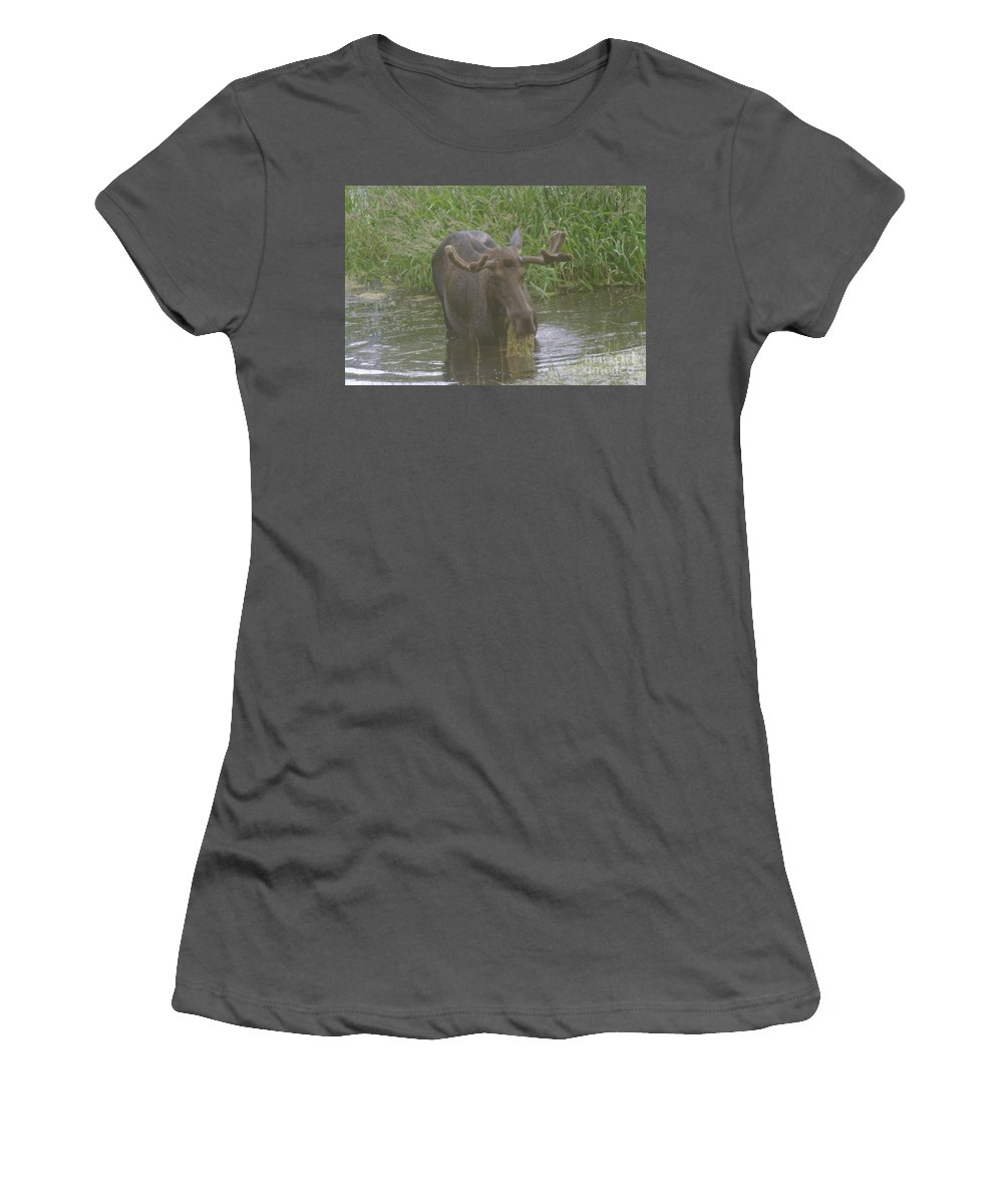 Wildlife Women's T-Shirt (Athletic Fit) featuring the photograph Eating With His Mouth Full by Jeff Swan