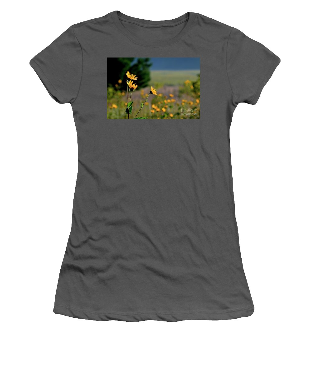 Color Photography Women's T-Shirt (Athletic Fit) featuring the photograph Good Morning Daisy by Sue Stefanowicz