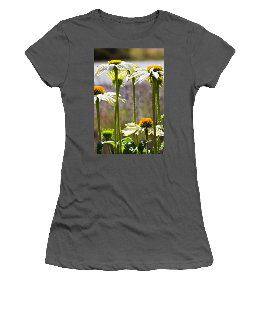 Cone Flowers Women's T-Shirt (Athletic Fit) featuring the photograph Groupings by Marie Jamieson