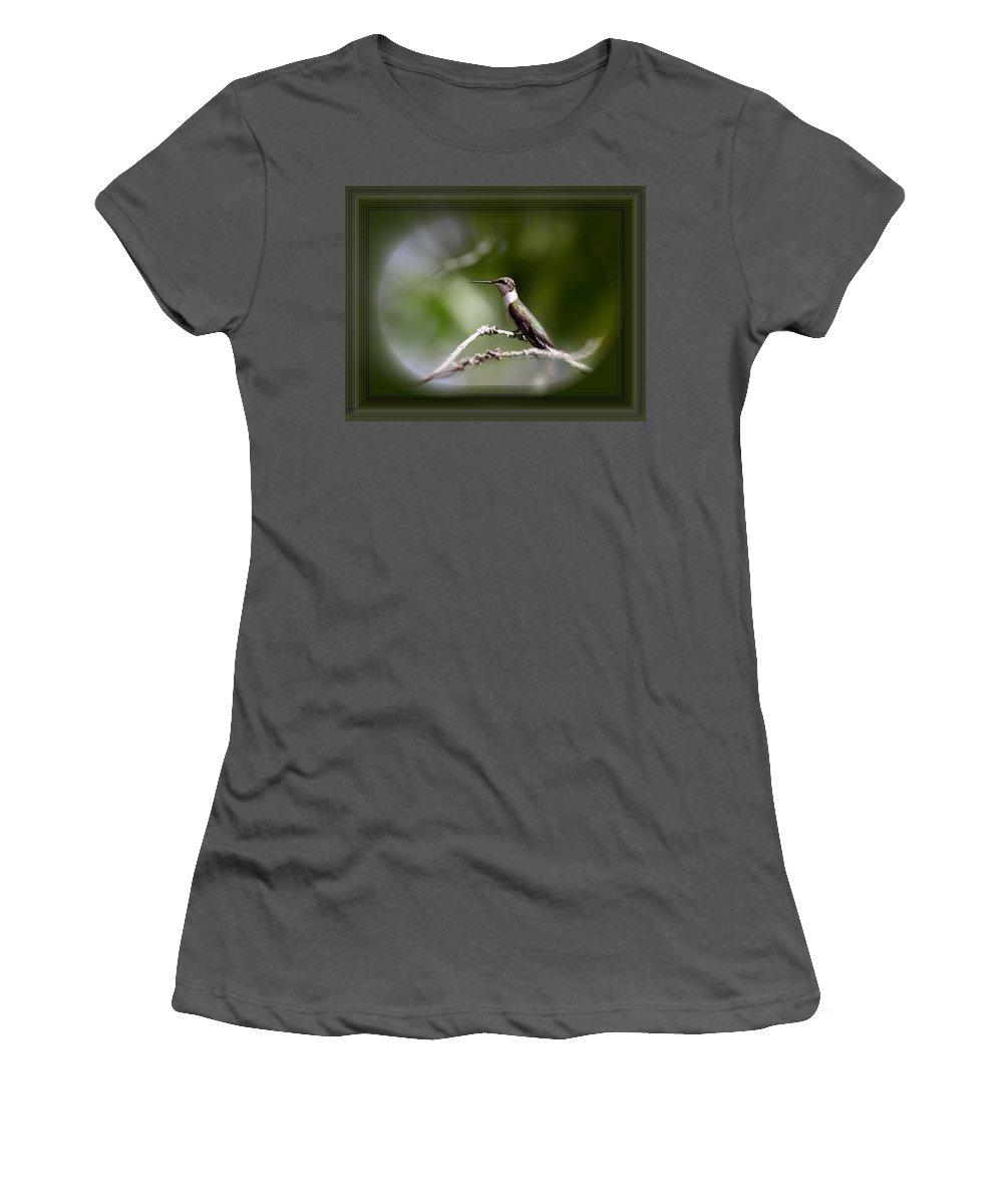 Hummingbird Women's T-Shirt (Athletic Fit) featuring the photograph Hummingbird - Bird by Travis Truelove