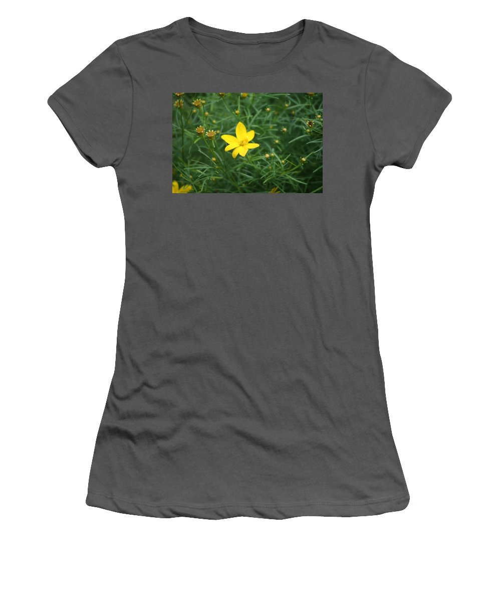Photo Women's T-Shirt (Athletic Fit) featuring the photograph Littlest Daisies by Barbara S Nickerson