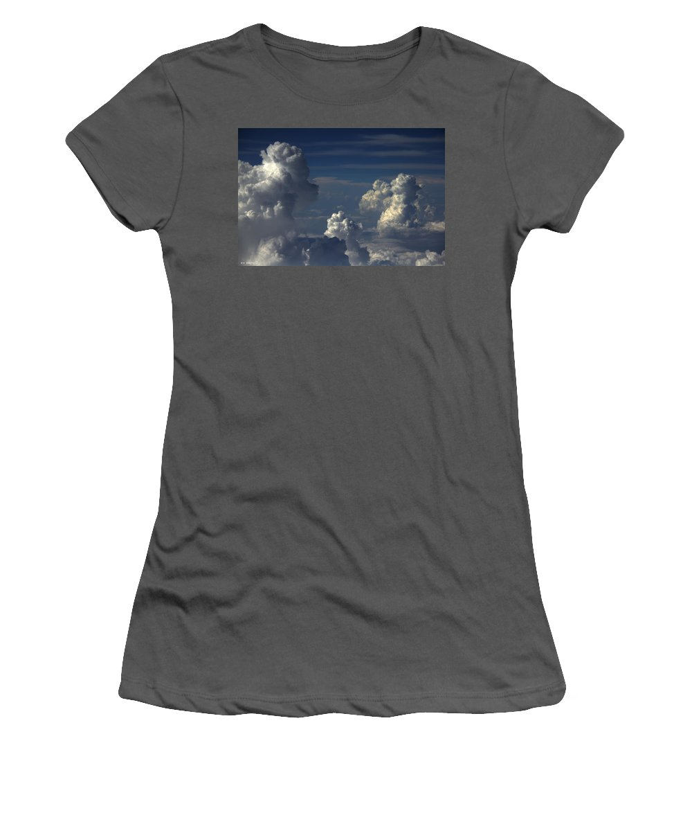 Parade Of Poodles Women's T-Shirt (Athletic Fit) featuring the photograph Parade Of Poodles by Ed Smith