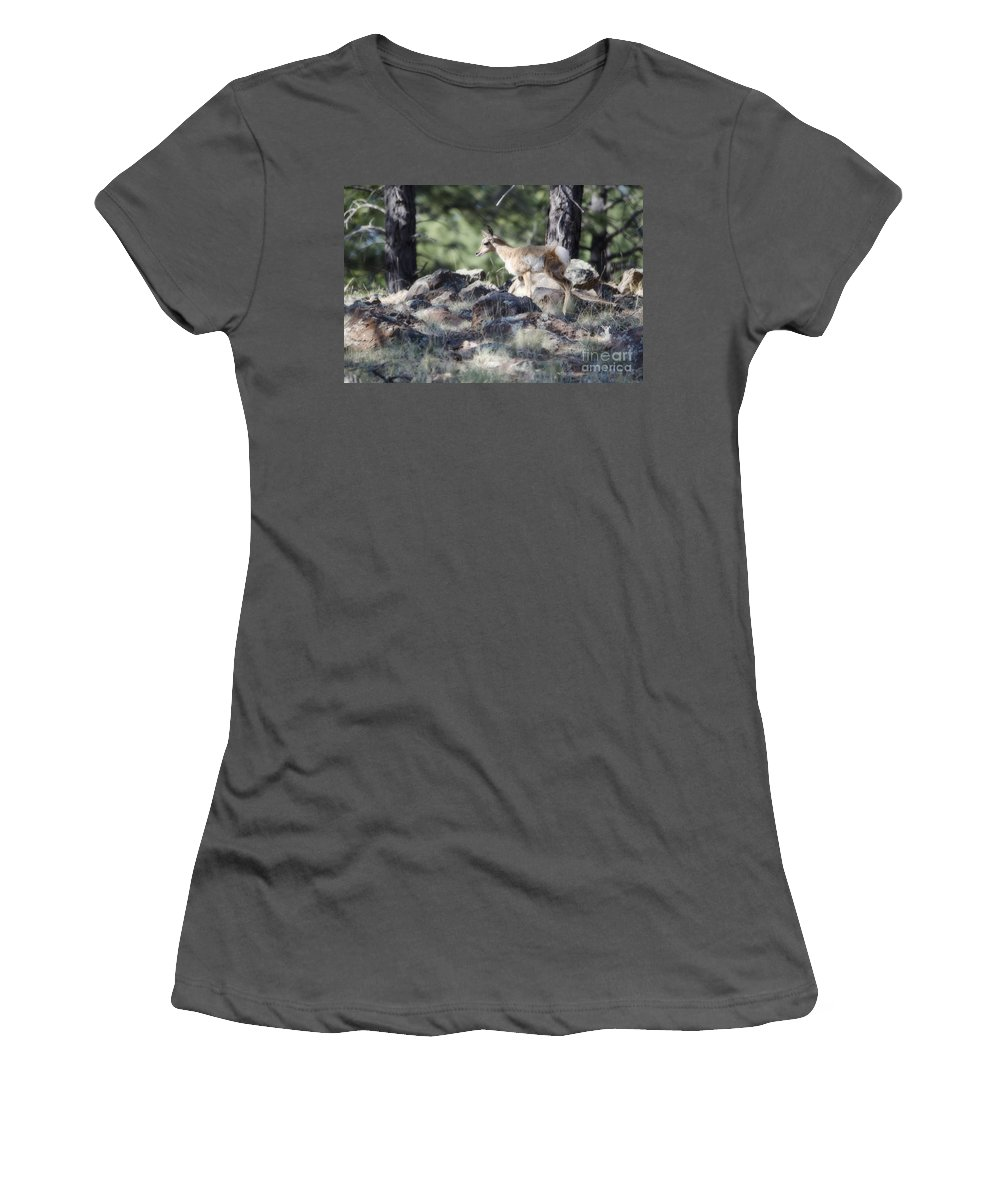 Fine Art Women's T-Shirt (Athletic Fit) featuring the photograph Pronghorn Antelope Fawn by Donna Greene