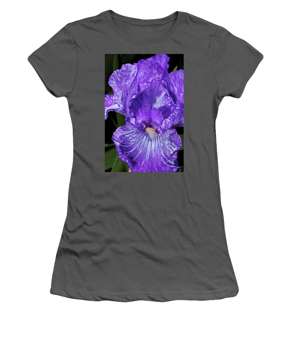 Iris Women's T-Shirt (Athletic Fit) featuring the photograph Purple And White Stiped Iris by Phyllis Denton