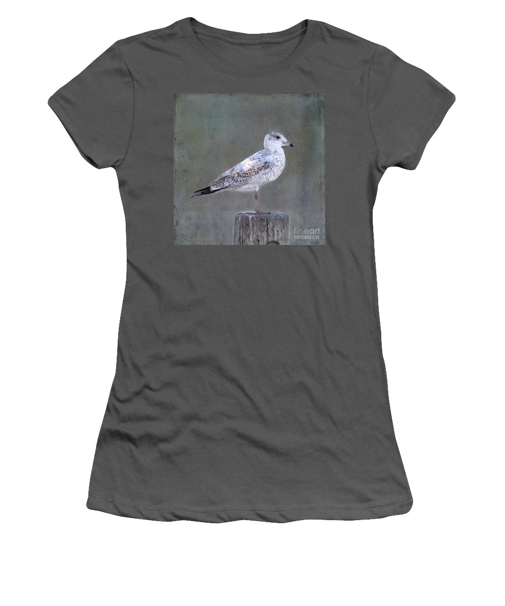 Seagull Women's T-Shirt (Athletic Fit) featuring the photograph Seagull by Betty LaRue