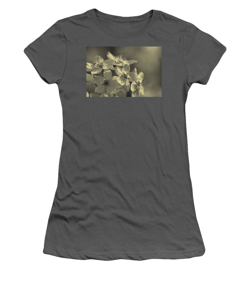 Calleryanna Women's T-Shirt (Athletic Fit) featuring the photograph Shimmering Callery Pear Blossoms by Kathy Clark