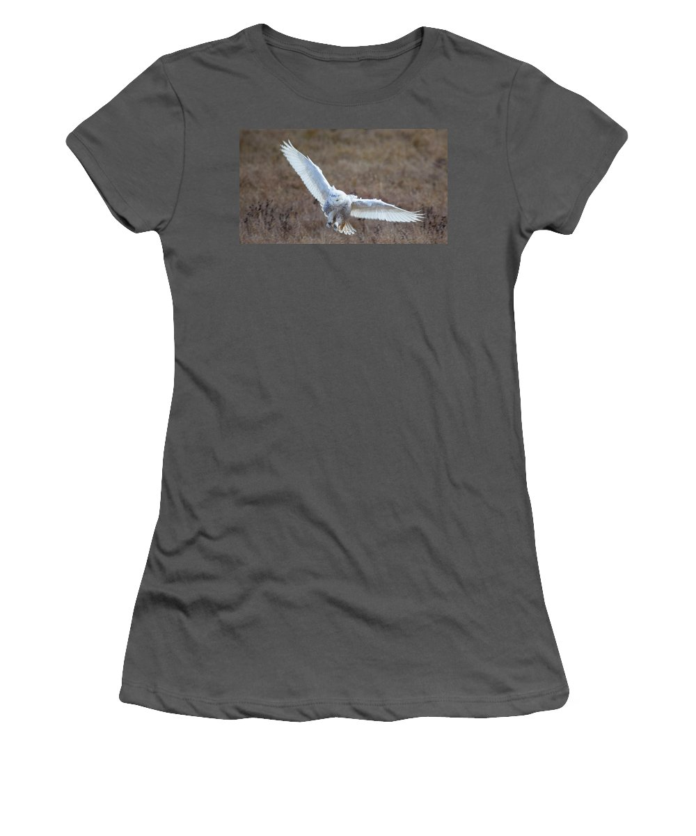 Owl Women's T-Shirt (Athletic Fit) featuring the photograph Snowy Flight by Karen Ulvestad