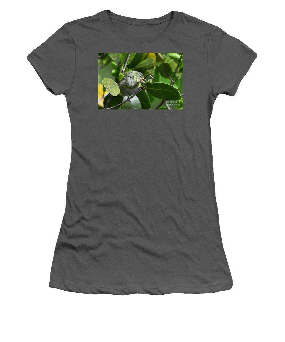Tennessee Warbler Women's T-Shirt (Athletic Fit) featuring the photograph Tennesse Warbler Eating Mangrove by Barbara Bowen