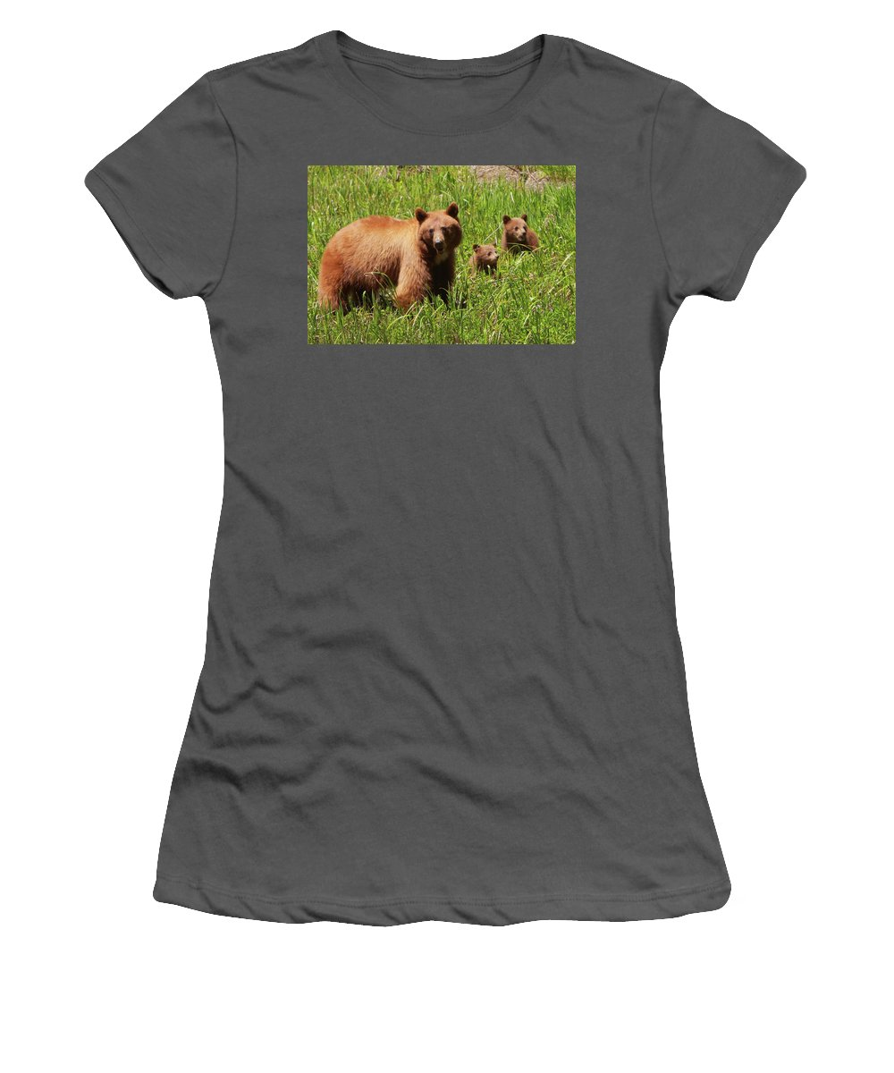 Bear Women's T-Shirt (Athletic Fit) featuring the photograph The Three Bears by Bruce J Robinson