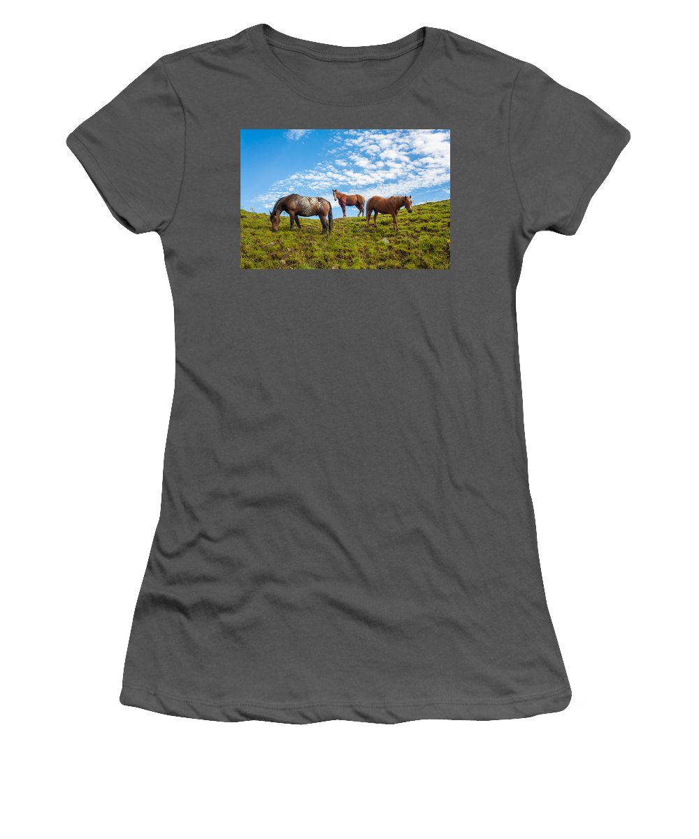 Animal Women's T-Shirt (Athletic Fit) featuring the photograph Two Quarters And An Appaloosa by Semmick Photo