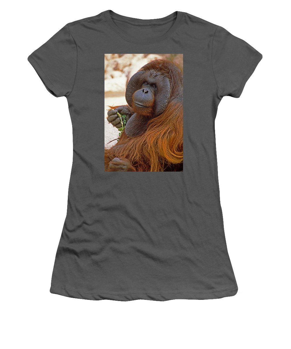 Orangutan Women's T-Shirt (Athletic Fit) featuring the photograph Big Daddy by Michele Burgess