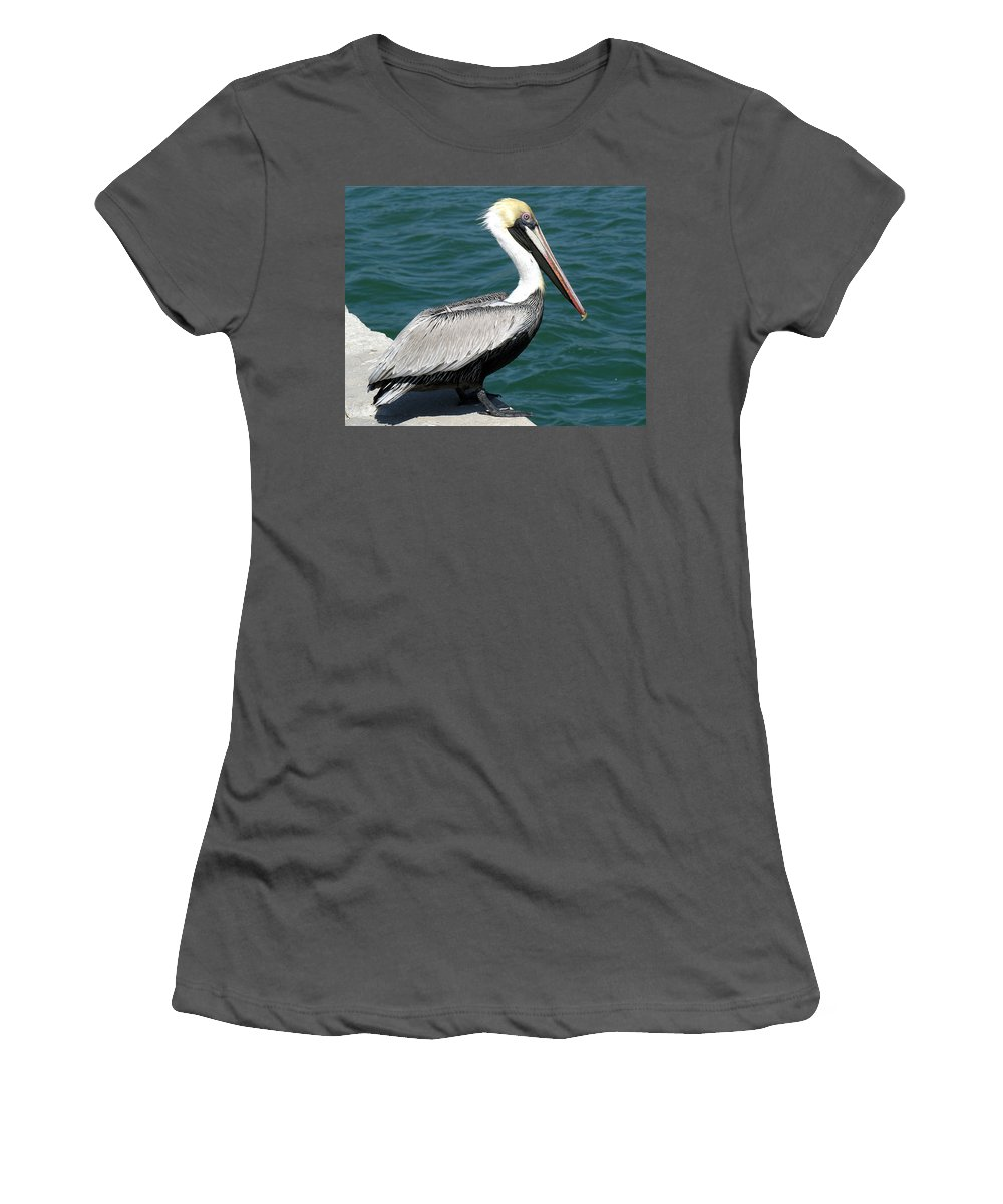 Pelecanus; Occidentalis; American; Brown; Pelican; Bird; Sea; Seabird; Ocean; Space; Coast; Cape; Ca Women's T-Shirt (Athletic Fit) featuring the photograph Brown Pelican by Allan Hughes