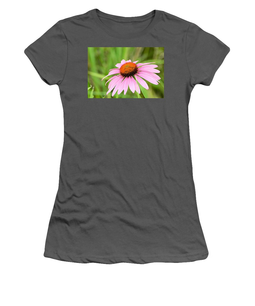 Cone Flower Women's T-Shirt (Athletic Fit) featuring the photograph Cone Flower by Larry Ricker