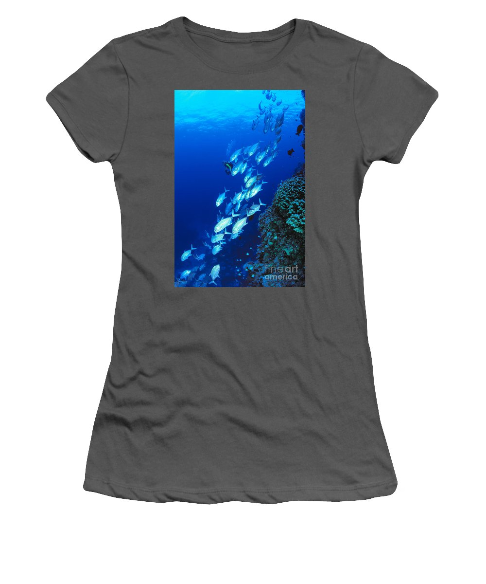 Bigeye Women's T-Shirt (Athletic Fit) featuring the photograph Diving Australia by Dave Fleetham - Printscapes
