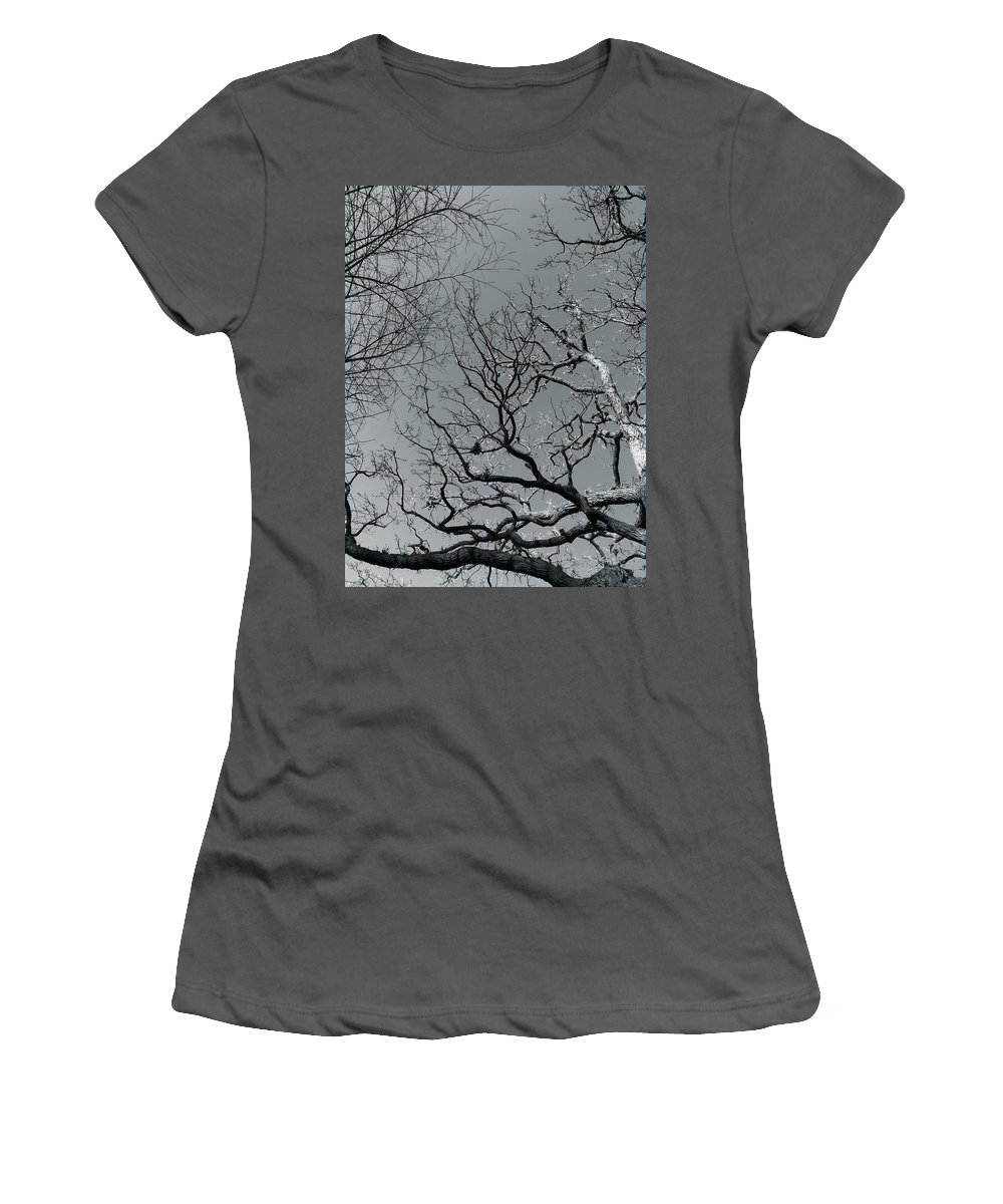 Trees Women's T-Shirt (Athletic Fit) featuring the photograph oak by Julian Grant
