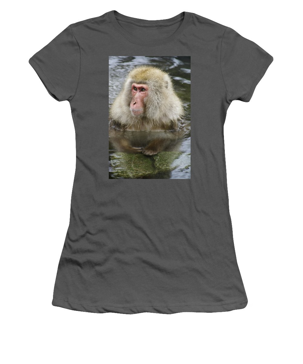 Snow Monkey Women's T-Shirt (Athletic Fit) featuring the photograph Snow Monkey Bath by Michele Burgess