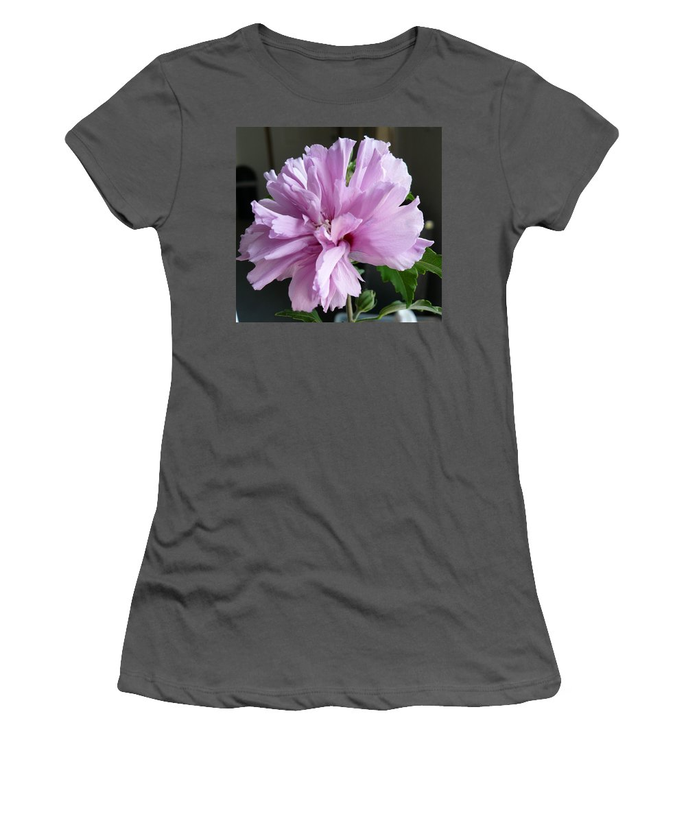 Phoyography.hibiscus Flower Floral Bloom Bush Pink Women's T-Shirt (Athletic Fit) featuring the photograph So Pink by Karin Dawn Kelshall- Best