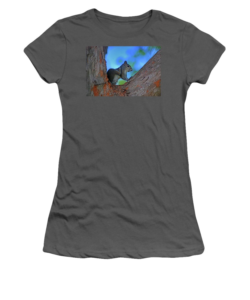 Squirrel Women's T-Shirt (Athletic Fit) featuring the photograph 1- Squirrel by Joseph Keane