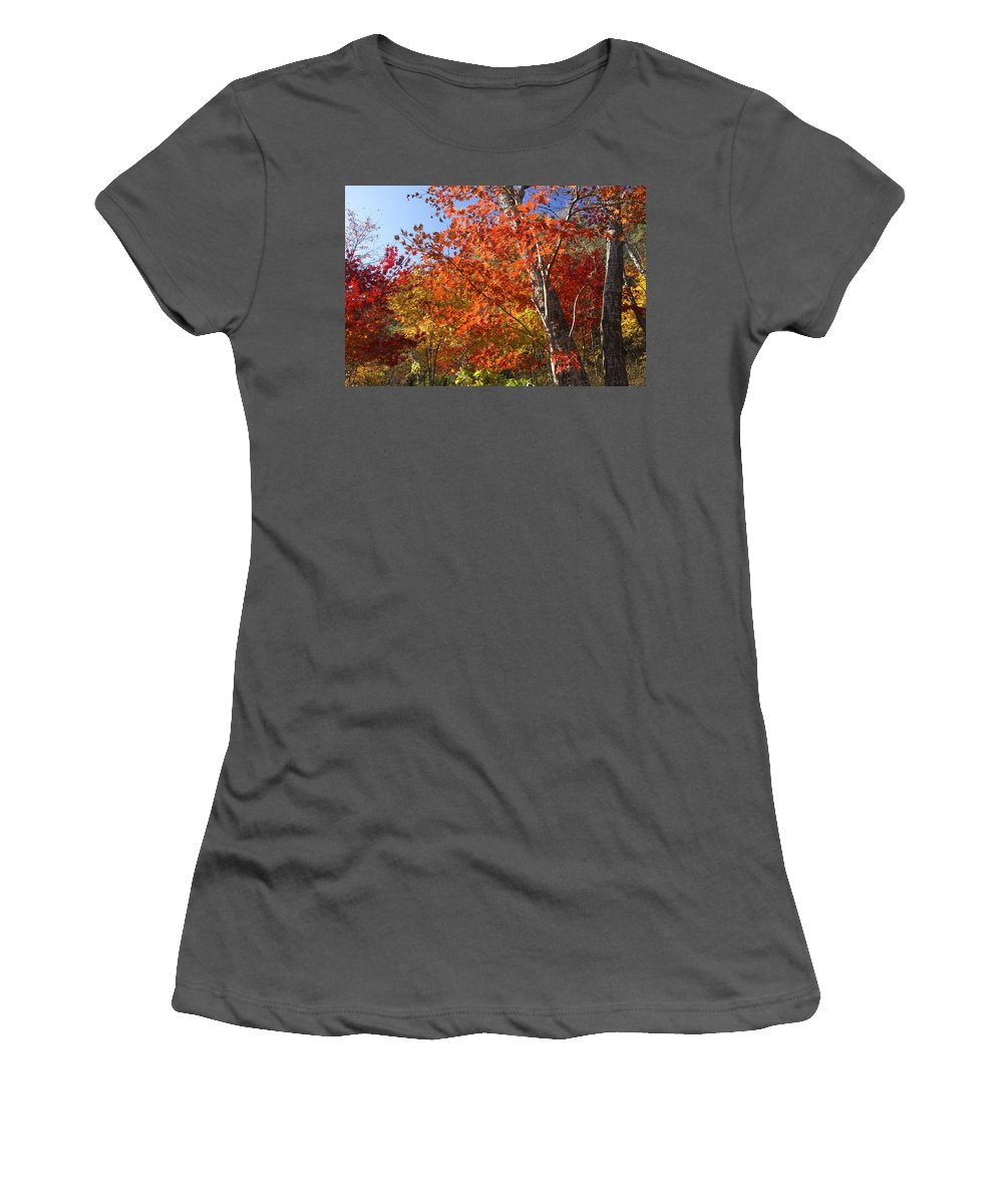 Autumn Women's T-Shirt (Athletic Fit) featuring the photograph The Colors Of Autumn by Michele Burgess