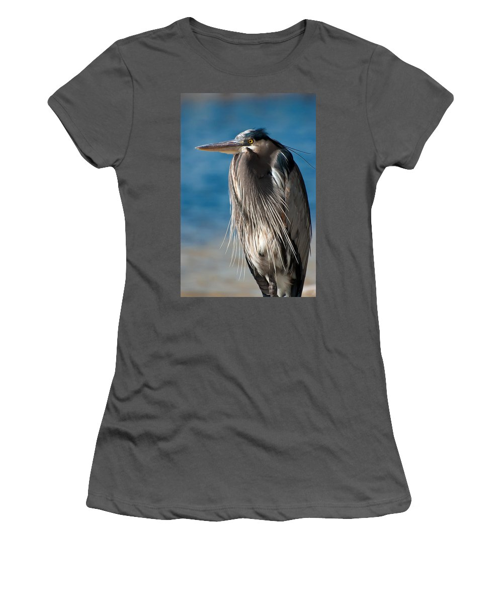 Bird Women's T-Shirt (Athletic Fit) featuring the photograph Great Blue Heron by Rich Leighton