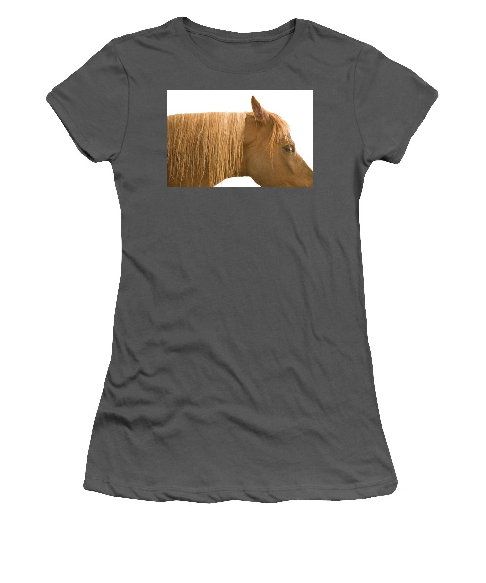 Animal Women's T-Shirt (Athletic Fit) featuring the photograph Horse Portrait by Ian Middleton