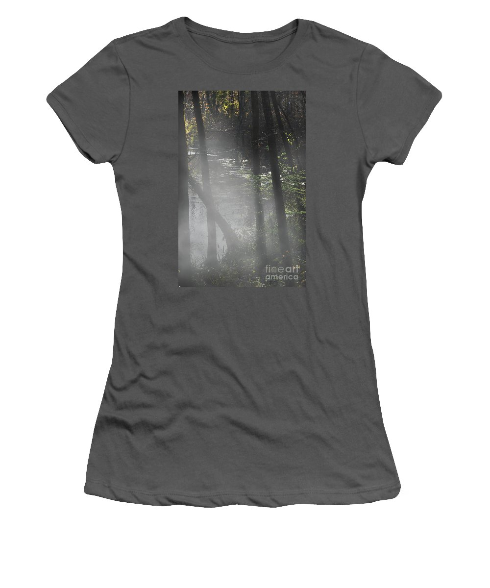 Scenic Tours Women's T-Shirt (Athletic Fit) featuring the photograph Forest Primeval by Skip Willits