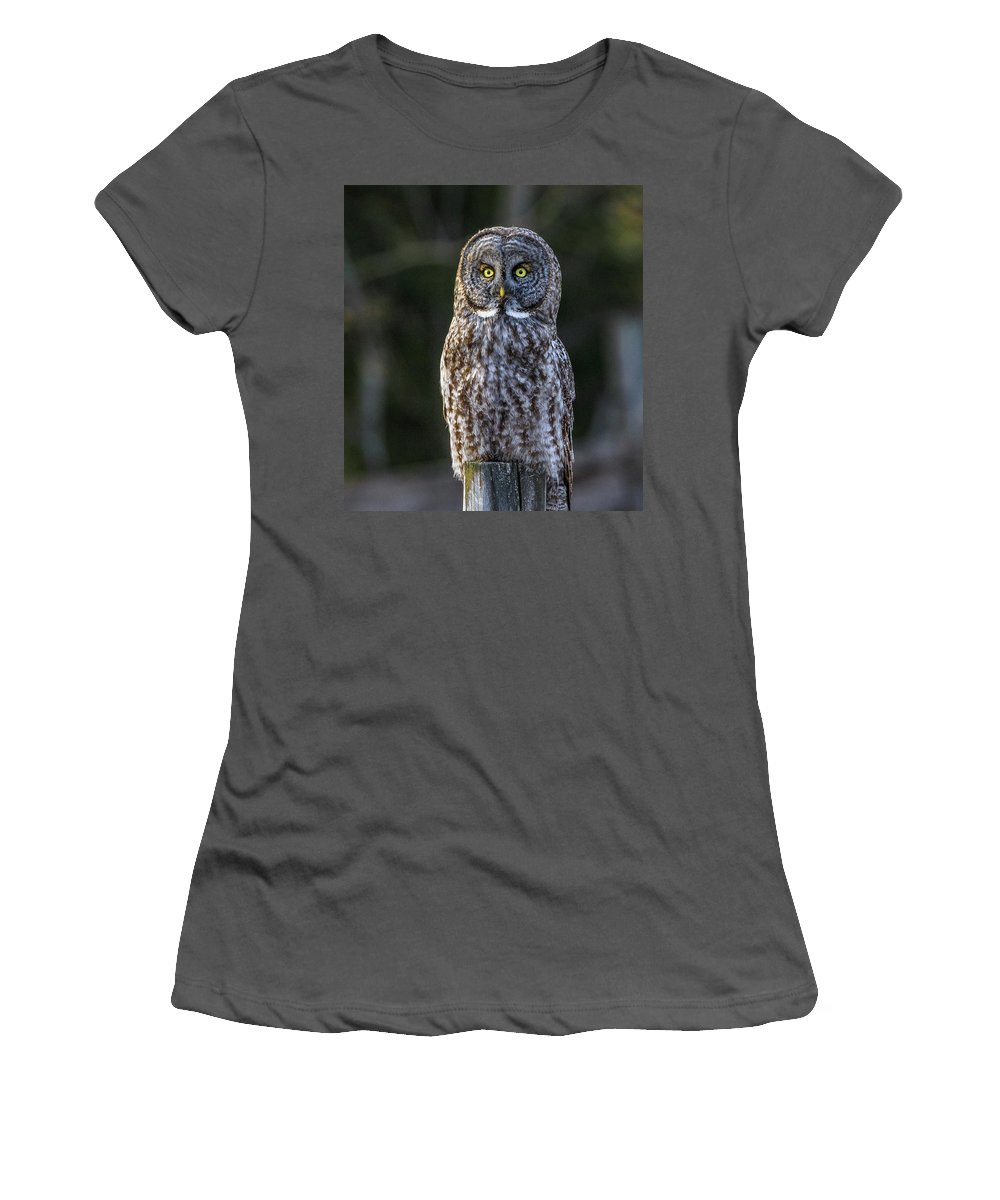 Owl Women's T-Shirt (Athletic Fit) featuring the photograph Great Gray Owl by Henry Gray