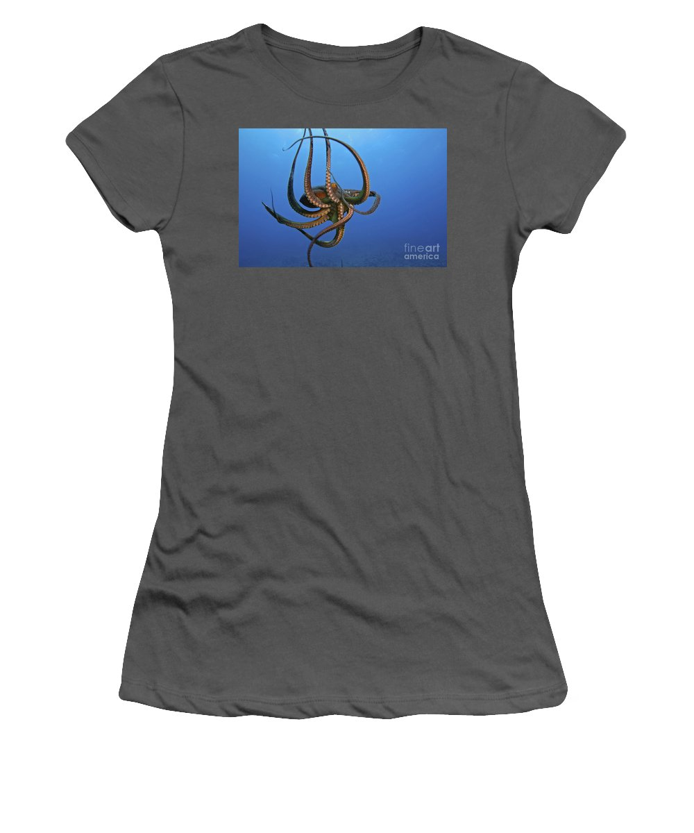 Abstract Women's T-Shirt (Athletic Fit) featuring the photograph Hawaii, Day Octopus by Dave Fleetham - Printscapes