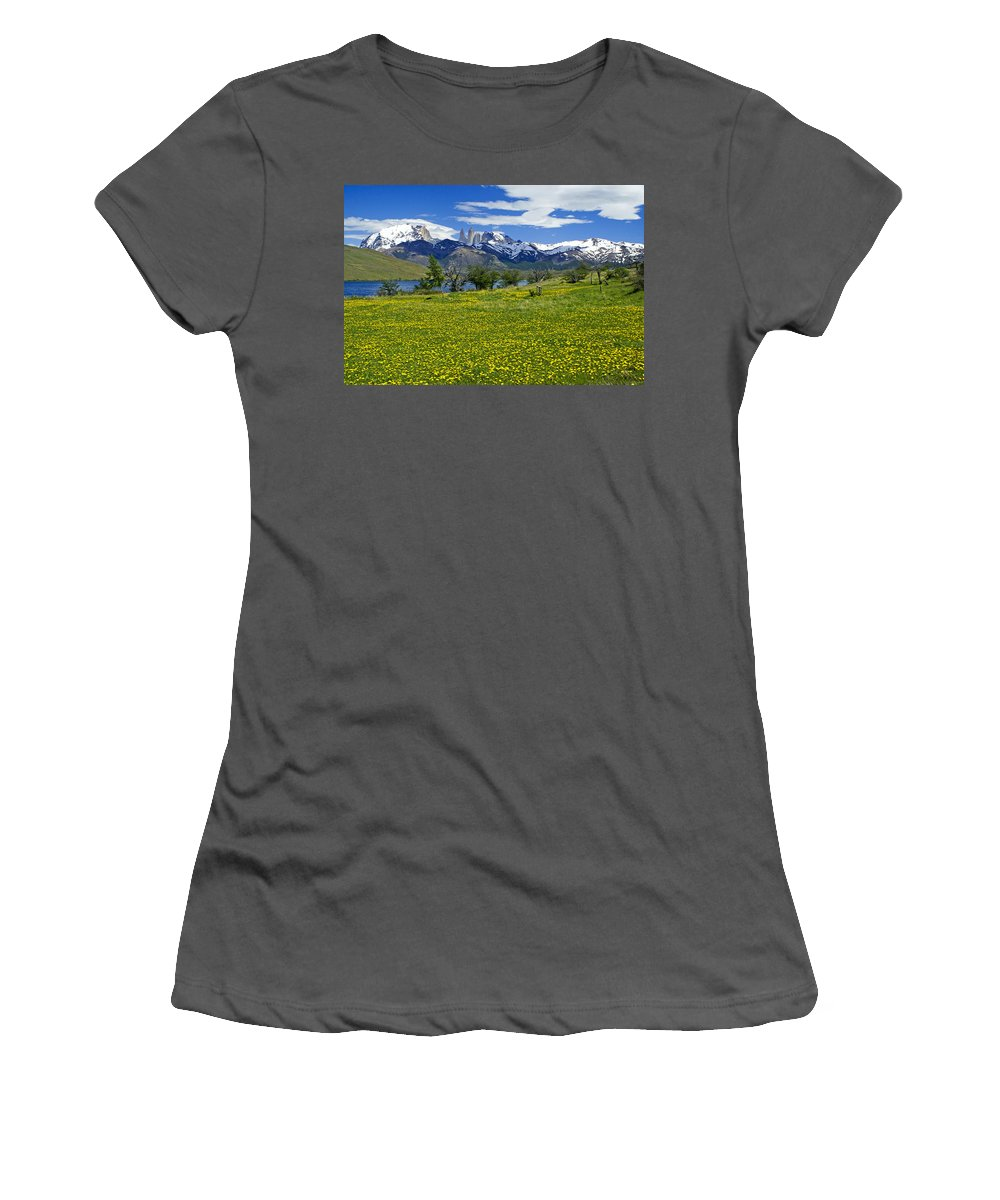 Patagonia Women's T-Shirt (Athletic Fit) featuring the photograph Springtime In Torres Del Paine by Michele Burgess