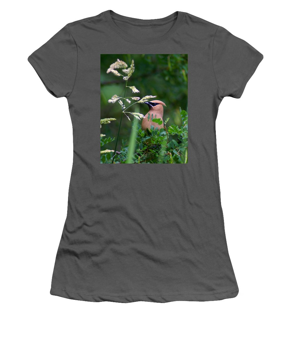 Birds Women's T-Shirt (Athletic Fit) featuring the photograph A Cedar Waxwing Facing Left by Ben Upham III