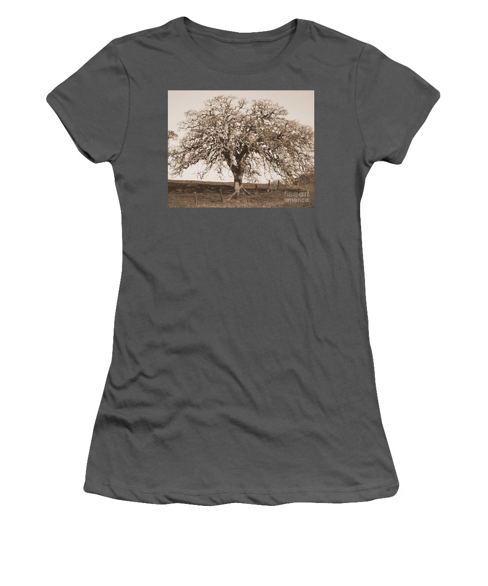 Tree Women's T-Shirt (Athletic Fit) featuring the photograph Acacia Tree In Sepia by Carol Groenen