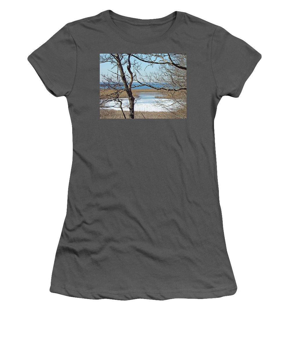 Beach Women's T-Shirt (Athletic Fit) featuring the photograph Across The Marsh To Woodneck Beach - Cape Cod by Mother Nature