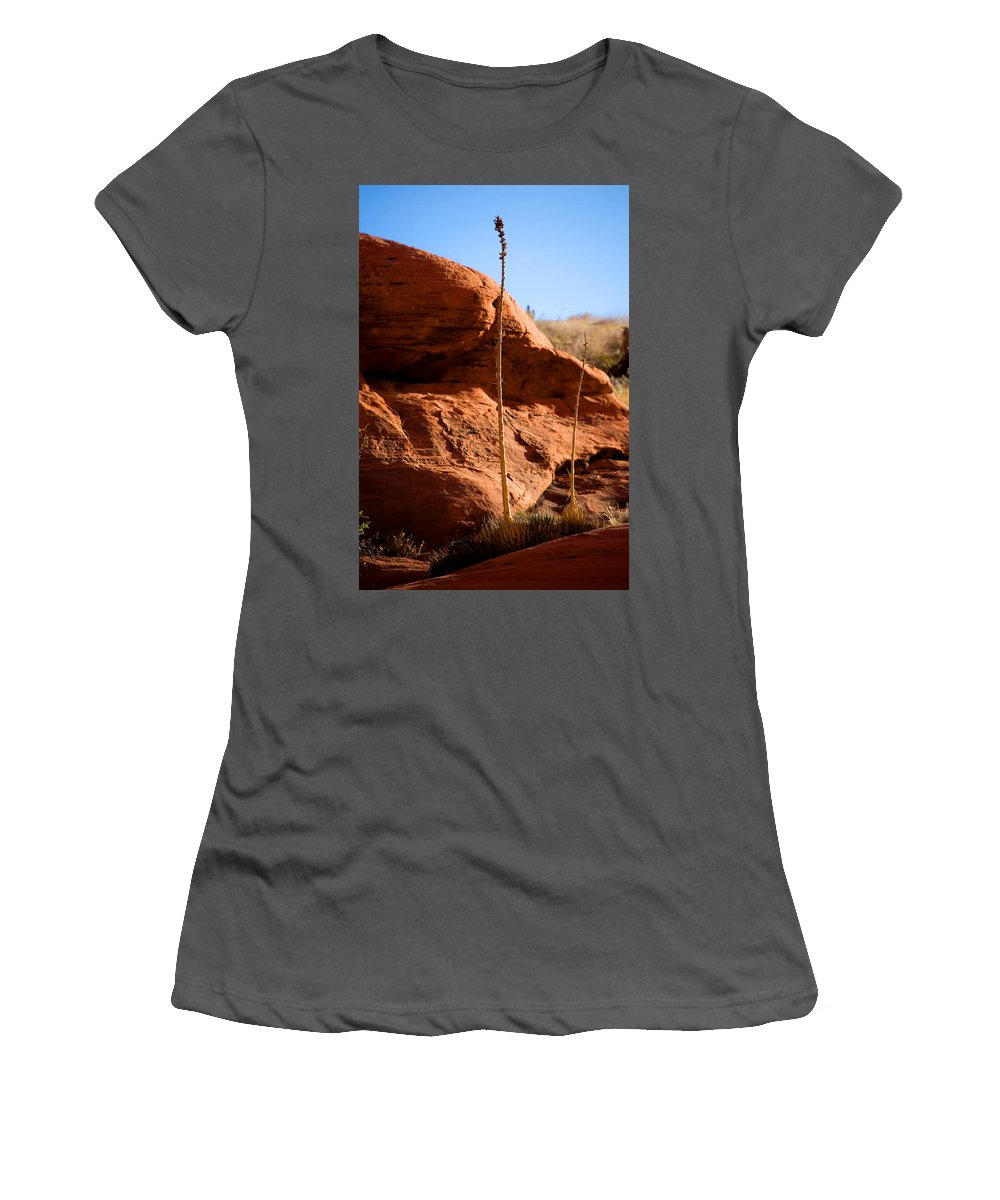 Agave Women's T-Shirt (Athletic Fit) featuring the photograph Agave Pals by Chris Brannen