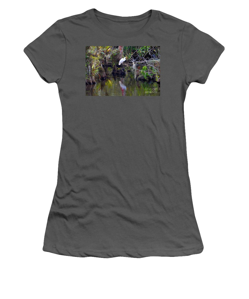 Everglades National Park Florida Women's T-Shirt (Athletic Fit) featuring the photograph An Egrets World by David Lee Thompson