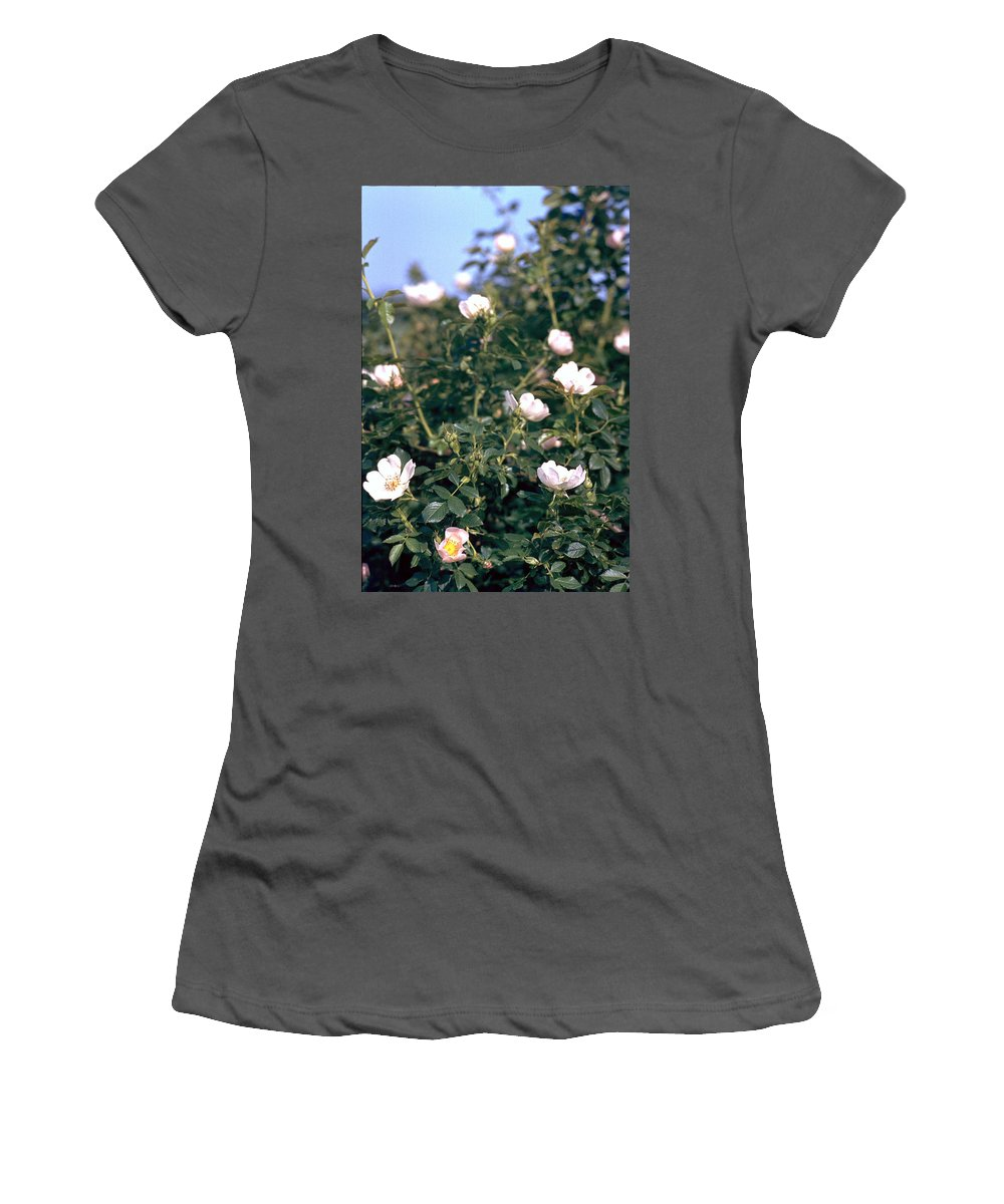 Anemone Women's T-Shirt (Athletic Fit) featuring the photograph Anemone by Flavia Westerwelle
