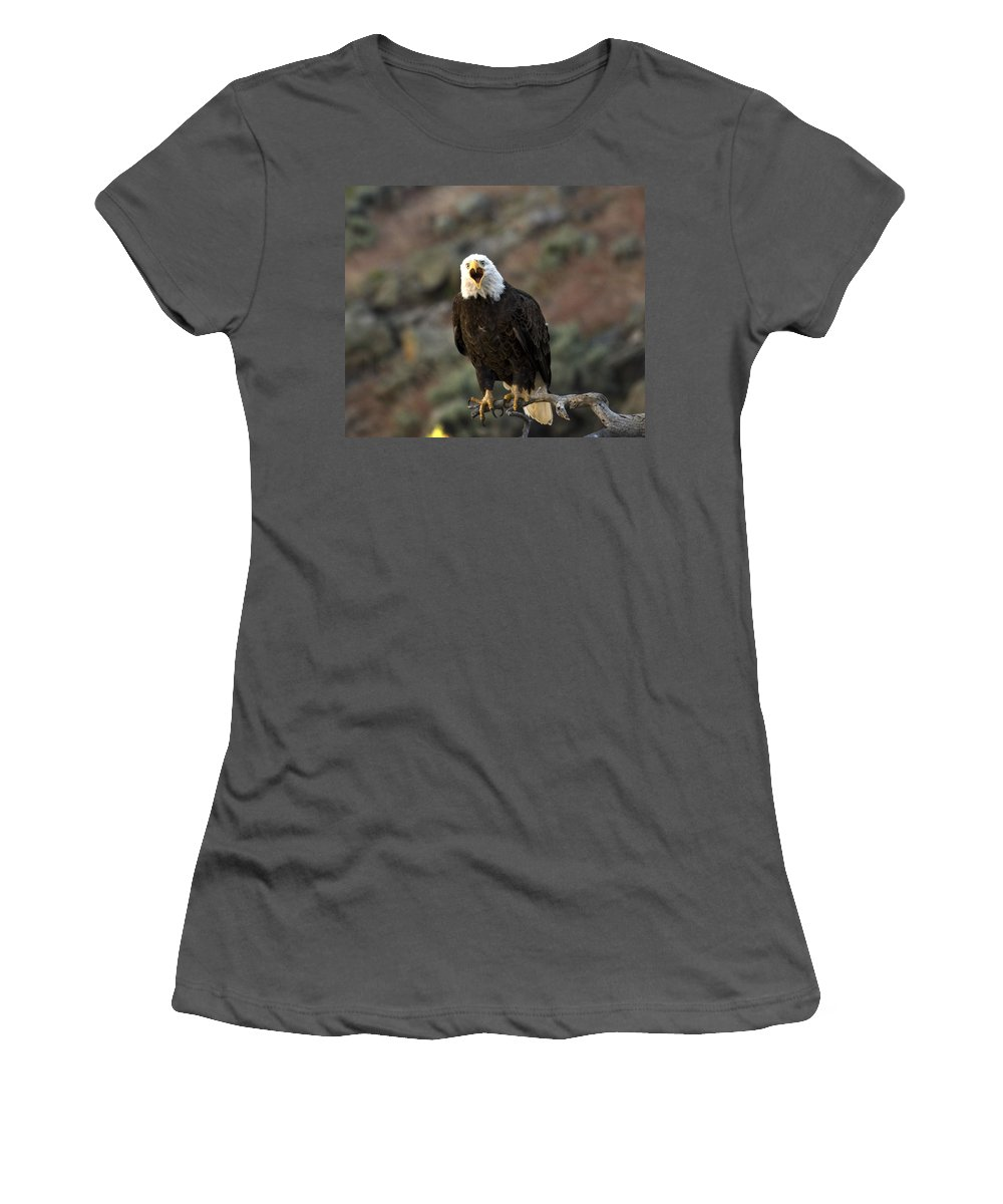 Bald Eagle Women's T-Shirt (Athletic Fit) featuring the photograph Angry Bald Eagle by Linda Weyers