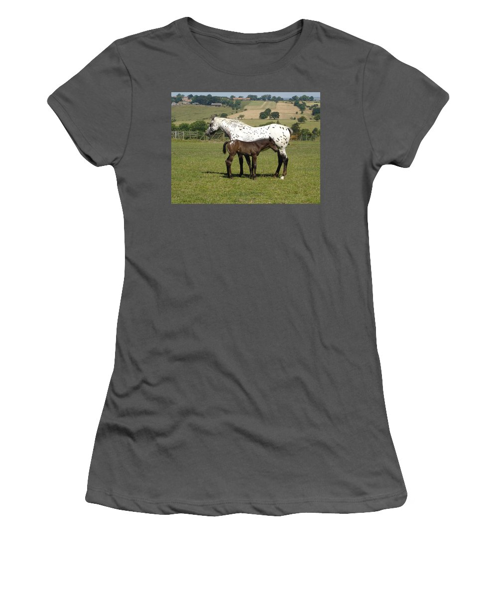 Horse Women's T-Shirt (Athletic Fit) featuring the photograph Appaloosa Mare And Foal by Susan Baker