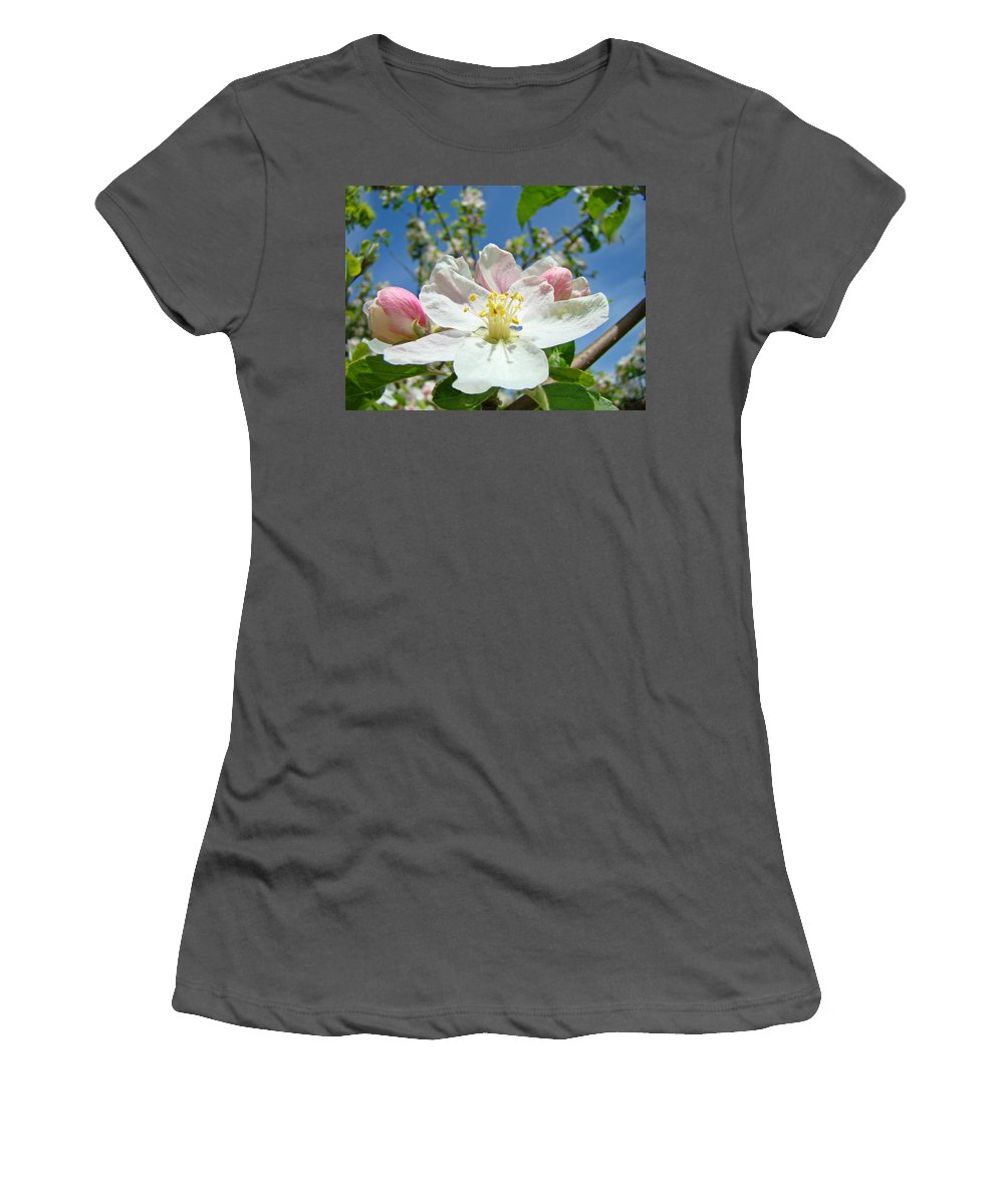 Blossom Women's T-Shirt (Athletic Fit) featuring the photograph Apple Tree Blossom Art Prints Springtime Nature Baslee Troutman by Baslee Troutman
