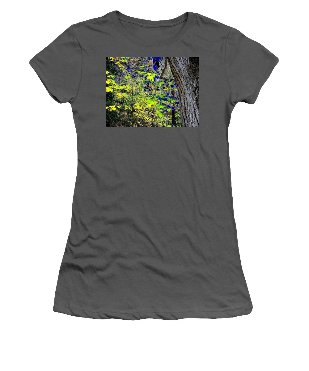 Surreal Women's T-Shirt (Athletic Fit) featuring the photograph Autumn Blue by Will Borden